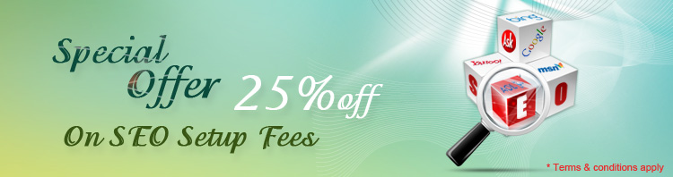 25% off on SEO setup fees